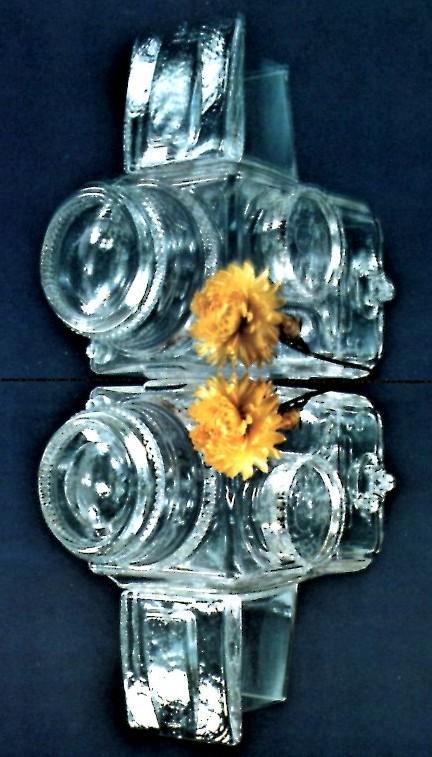 hasselblad cristallo