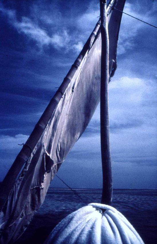 barcella-oreste-3
