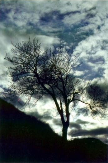 mologni -nuvole