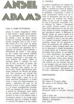 adams 00